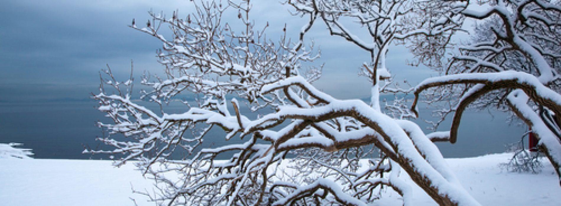 Seasonal Melancholy – Enjoy the Colder Season