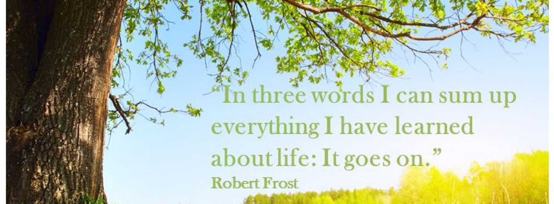 """In three words I can sum up everything I have learned about life: It goes on."""
