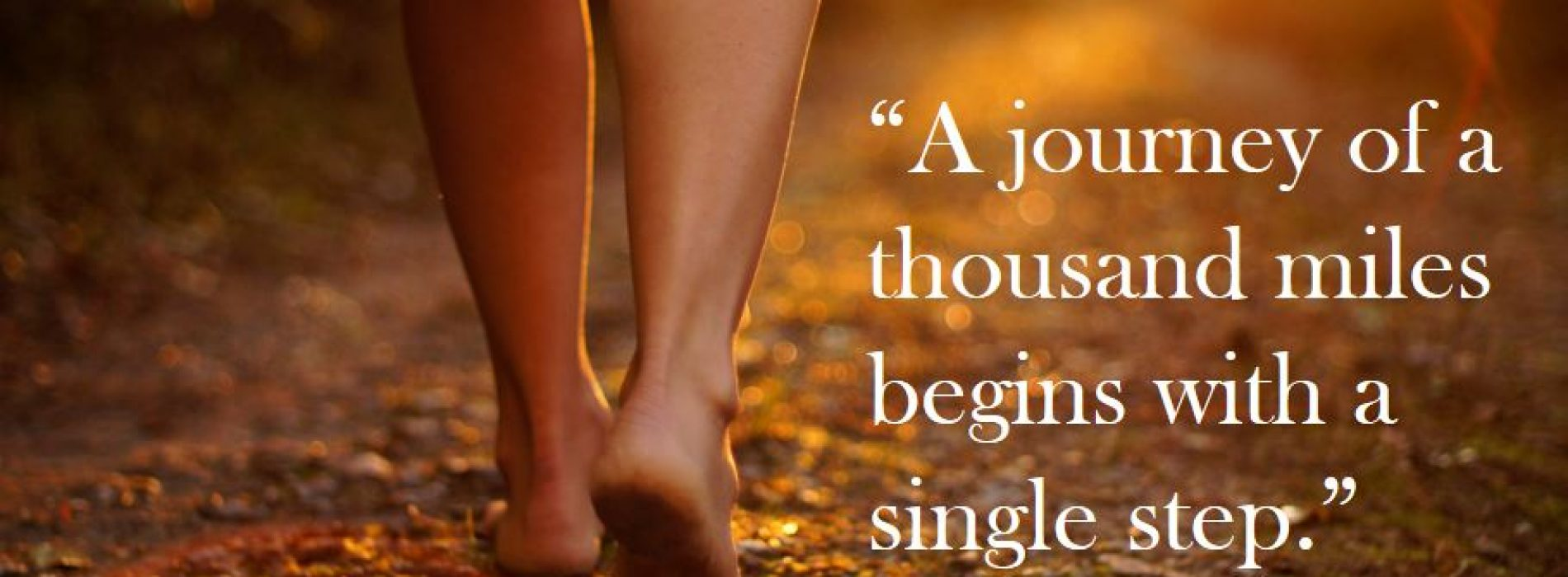 """A journey of a thousand miles begins with a single step."""