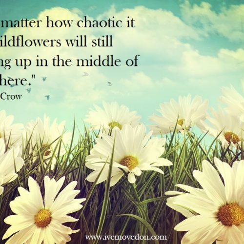 """No matter how chaotic it is, wildflowers will still spring up in the middle of nowhere."""