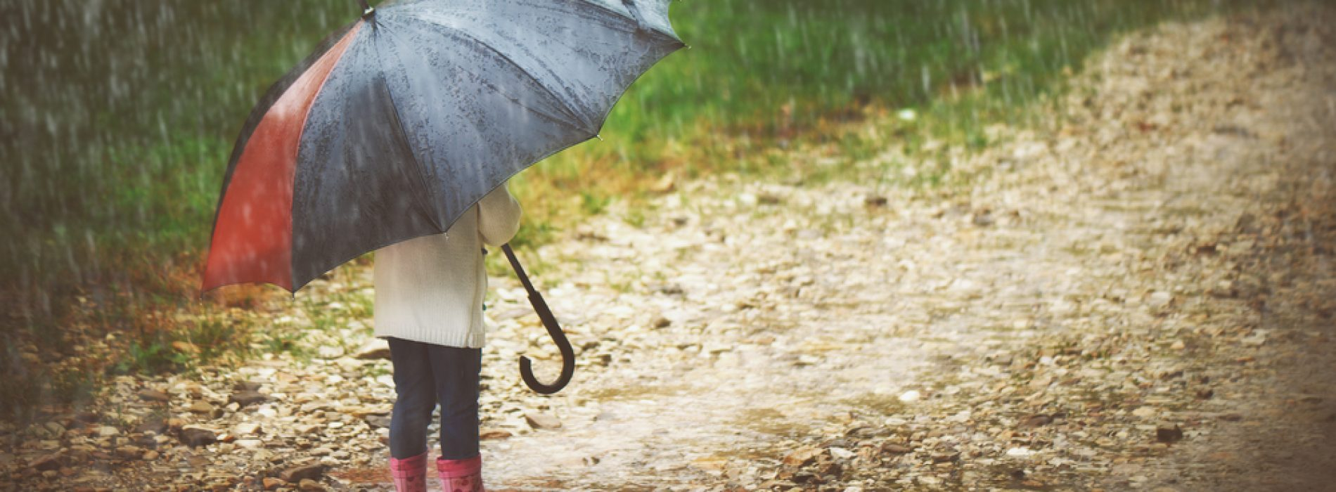Weathering the Divorce Storms